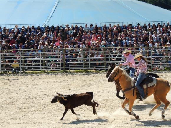 http://azona.cowblog.fr/images/Repertoire6/equiblues035.jpg