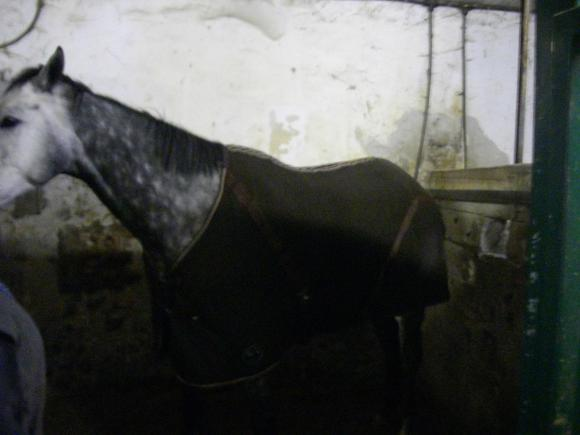 http://azona.cowblog.fr/images/repertoire3/Couverture003.jpg