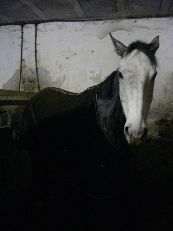 http://azona.cowblog.fr/images/repertoire3/Couverture004.jpg