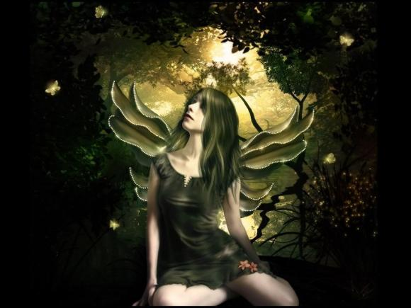 http://azona.cowblog.fr/images/repertoire5/ShinningButterflyFairyWallpaperfairies102704741024768.jpg