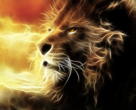 http://azona.cowblog.fr/images/repertoire5/lion-copie-1.jpg